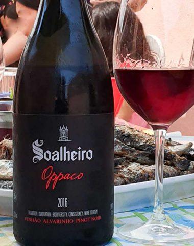 Bottle2020@carlosjaneiro_todososdireitosreservados-110-2